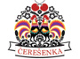 DFS Čerešenka hľadá chlapcov vo veku 6 až 12 rokov